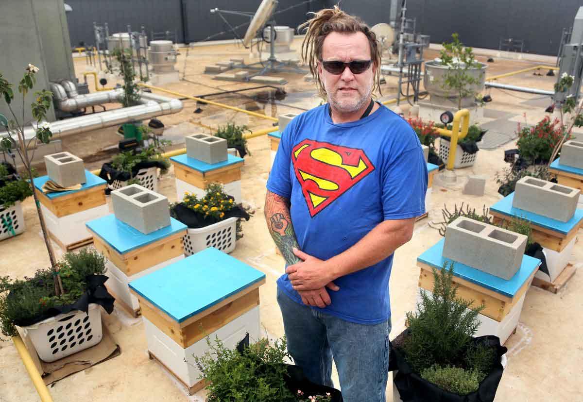 walter-ahbpa-beehives-rooftop-texas